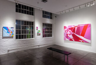 Marna Shopoff: Color Correction, installation view