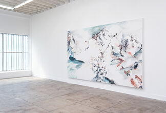 Kings Canyon, installation view