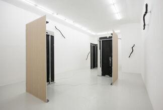 THE BUZZ - David Stjernholm, installation view