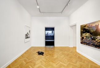 Field Vision: Christian Jankowski, Jon Rafman, installation view