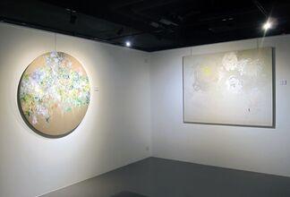 Fleeting Eternities • Myonghi, installation view