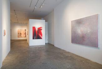 Dee Ferris, Barnaby Furnas, Annie Lapin, installation view