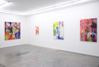 Evan Nesbit: Perishable Gestures, installation view