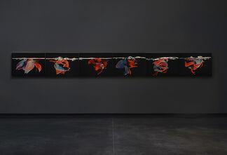 Hiro : Fish and Fowl, installation view