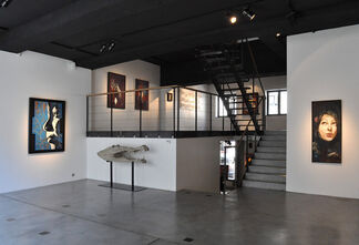 C215 - 10 years of painting (2006-2016), installation view