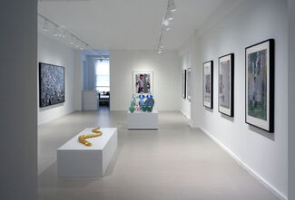 Interdependence/Indispensability, installation view