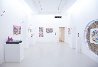 Mundo Cane, installation view