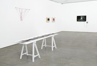 The Naturalists, installation view