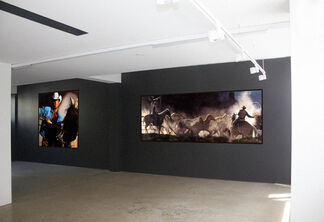Beyond Fences, installation view