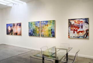 Gardens of Abstraction, installation view