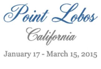 POINT LOBOS: California, installation view