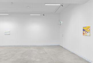 Flotsam and Jetsam, installation view
