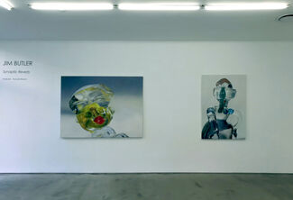 JIM BUTLER:  Synaptic Reverb, installation view