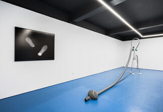 Gas foraday, installation view