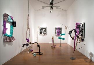 Daughter Universe, installation view
