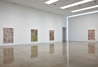 Simmons & Burke: Dutch Masters, installation view