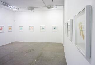 Charles Schwall: Breaking, Splitting, Seaming, installation view