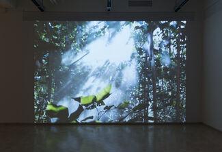Beatriz Santiago Muñoz: A Universe of Fragile Mirrors, installation view