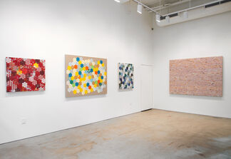 American Bloom, installation view
