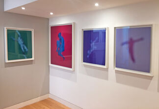 Focus on Bill Armstrong's Renaissance series, installation view