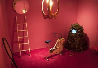 The man who saved a dog from an imaginary fire, installation view
