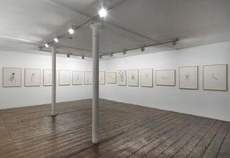 Margherita Manzelli, La Casa delle Farfalle, installation view