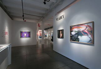 Vladey at Cosmoscow 2017, installation view