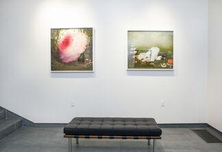 Beautiful Broken Things, installation view
