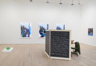 The Fifth Season, installation view