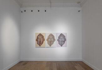 Ayça Telgeren, 'Hand of the Artist', installation view