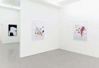 Natalie Czech: My Vocabulary Did This To Me, installation view