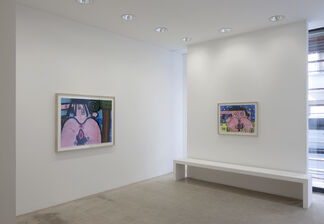 Carroll Dunham — Works On Paper, installation view