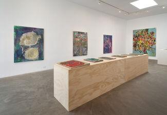 Roger Herman, installation view
