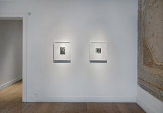 Rasim Aksan, 'Narcissus', installation view