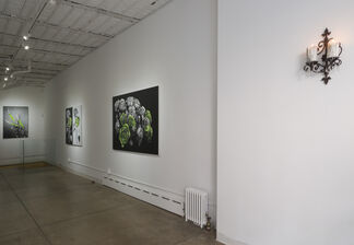Duality, installation view