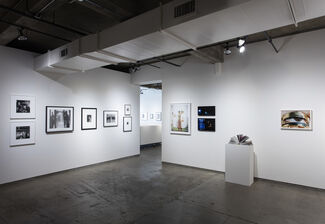Me, installation view