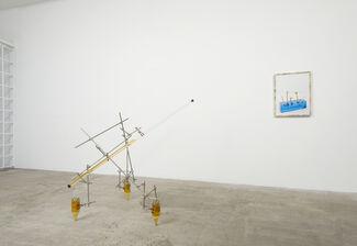 Anton Lieberman: Dog's Breakfast, installation view