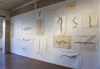 Soft Tissue, installation view