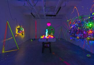 Cameron Gray: Birth of a Legend, installation view