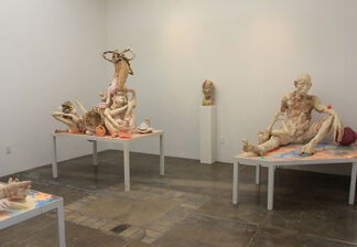 Meghan Smythe: A Swollen Light Behind The Eye, installation view