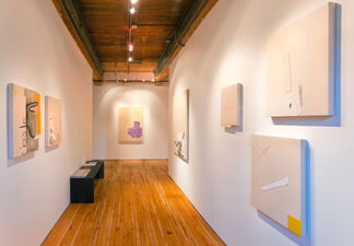Jo Smail: Degrees of Absence, installation view