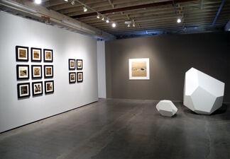 "Rena Bass Forman ""In Memoriam"", installation view"