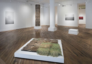 Susan Goethel Campbell: Faulty Vision, installation view