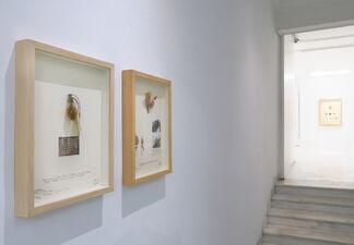 "Alberto Baraya: ""A Sicilian Expedition"", installation view"