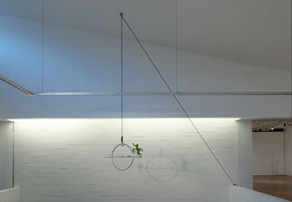 Falling Suspended, installation view