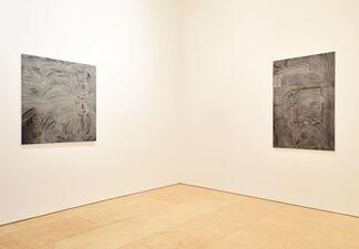 Paul Mcdevitt- Grand Canyon, installation view