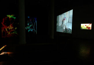 Enchanted Space, installation view