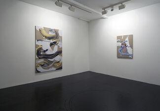 Matthew Stone: Cosmic Flesh, installation view