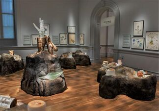 Reforestation of the Imagination, installation view