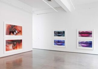 """Sam Samore - """"Library of Appearances"""", installation view"""